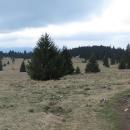 Stredná poľana, cca 1250 metrů.