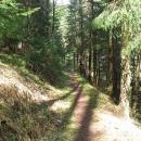 Pěšinka v lese spojuje Lúčky a sousední Kalameny. Vypadá idylicky.