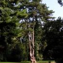 Další skvost Buchlovického zámeckého parku