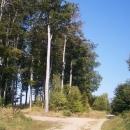 Cyklotrasy Chřibskými lesy