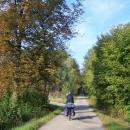 Rozcestí U obrázku ve Ždánickém lese