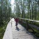 Radost dětí jezdit po dřevěných lávkách!