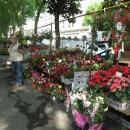Květinové tržiště