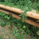 Imitace dřeva (svodidla)