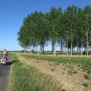 Francouzský les je podobný lesu maďarskému :-)