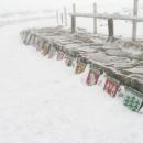 Pramen Labe - pod sněhem je ještě jedna řada erbů.