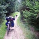 ... a dál byla jen lesní cesta...