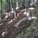 Skrovné zbytky Šaumburku