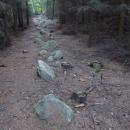 Kamenné řady u Kounova (celkem jich je 16)