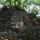 Nejzachovalejší zbytky hradu Džbán