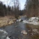 Řeka Malše u Skoronic