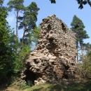 Hradní palác na Víckově