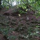 Z hradu Košíkov zbyla jen hromada kamení