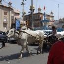 Na ulicích se potkává moderní i původní způsob dopravy