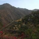 Kaskádovitá políčka na svazích hor