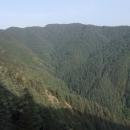 Budete se divit, ale les byl až dosud na naší cestě vzácnost, na tento se dokonce jezdí Indové dívat