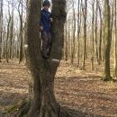 Víťa na stromě