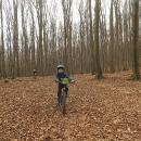 Po listnatých cyklotrasách pokračujeme dál