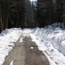 Ale ne, dál už je to v pohodě a sníh je už opravdu jenom místy