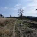 Pohraniční hřeben Javořích hor