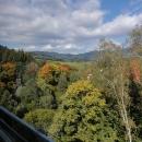 Pohled z vlaku na krásně zbarvenou přírodu Sovích hor