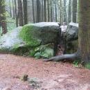Víťa v kameni