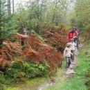 Hřeben vede zpočátku jen lesem, zdá se pohodový.