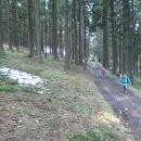 V lese, kde se vzaly, tu se vzaly, objevily se zbytky sněhu. Ne ovšem toho loňského... tento byl starý pár dní.