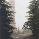 Rozhledna Zlatý Chlum u Jeseníku (875 m.n.m.) není pro mlhu skoro vidět
