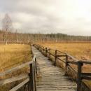 Chodníčky v rašeliništi - děti by se tu vyřádily