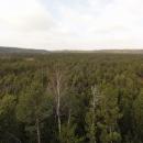 Rašeliniště Topielisko, kde se rodí řeka Divoká Orlice