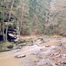 Divoká Orlice ve svém údolí