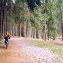 Terka na cyklostezce údolím Divoké Orlice