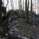 Malá skála na které stával hrad Řebřík