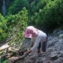 Přidržovat se můžete (musíte!) jen kořenů zakrslých borovic