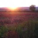 Při západu slunce míříme ke Krakovci