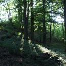 Hradní vrch hradu Řebřík