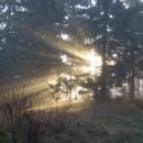 Je to jen tak tak. Mlha se pohybuje přesně v 900 - 1100 metrech. Na Klínovci podle webkamery svítí sluníčko :-(