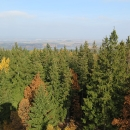 Konečně se po třech dnech udělalo hezky a je i něco vidět :) A to i když stromy pomalu rozhlednu dorůstají