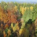 Trocha podzimních barev