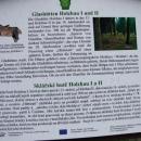 V lesích u Holzhau můžete najít i zbytky sklářských hutí