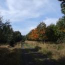 Podzimní přírodou ke Sněžníku