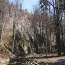 Skalní stěna nad potokem