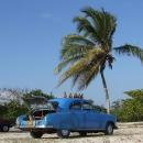 Pojízdná prodejna výborného ananasu