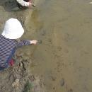 Děti zkoumají pulce
