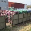 Mimochodem, víte, co se děje s plasty v třídírně odpadů? Roztřídí je podle barev :-)