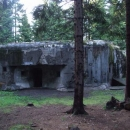 Pevnostní srub v lesích