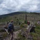 Uschlé lesy na hřebenu, Kralický Sněžník v pozadí
