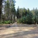 Cyklotrasy po písčitých cestách v lesích kolem Borohrádku