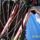 Pavučina v drátech Markétina kola - nejvyšší čas zase někam vyrazit :-)